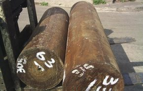 Guiacwood Essential Oil