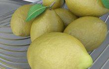 Lemonile at 10% in IPM