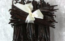 Vanilla Cognac Tincture