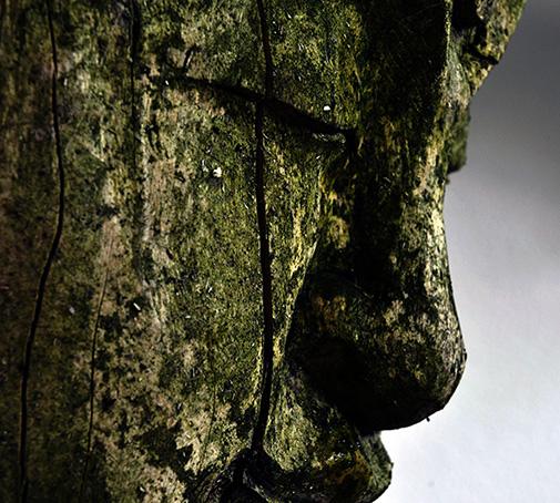 Buddha Wood CO2