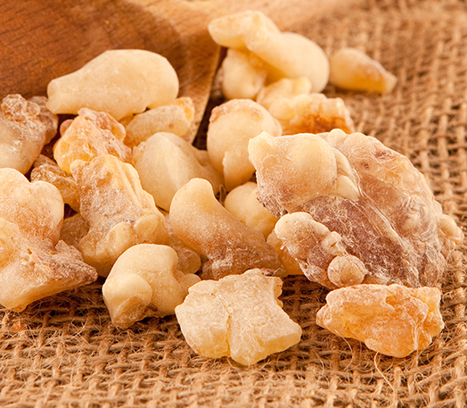 frankincense neglecta essential oil