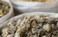 Frankincense-rivae-essential-oil