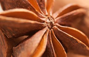 Star Anise CO2