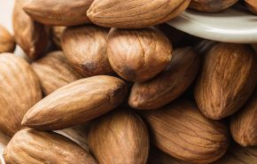 Almond Bitter Essential Oil