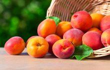 apricot-liquid-100