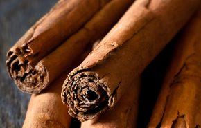 cinnamon bark CO2