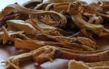 gentian-root