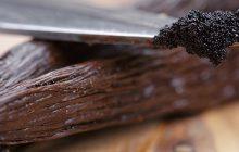Vanilla-bourbon-tincture-20