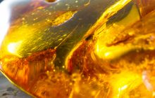 Amber Core