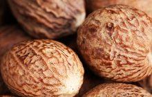 Nutmeg Absolute