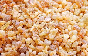 Frankincense Absolute