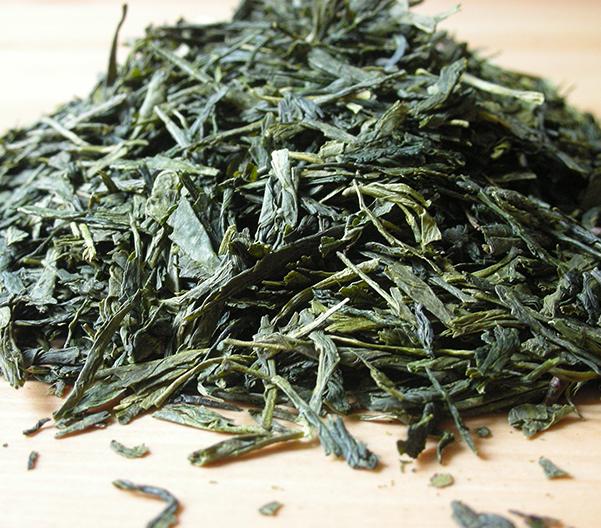 Green Tea Sencha Shokai 25% Tincture