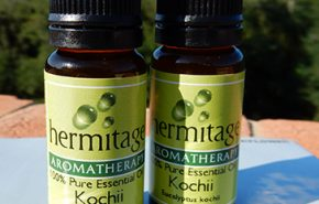Eucalyptus Kochii essential oil